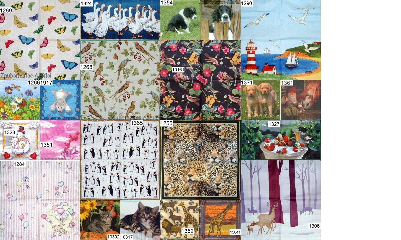 Tiermotive 11